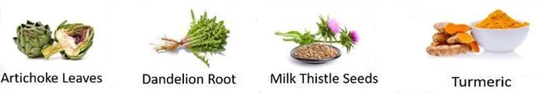 aplgo hpr detoxification ingredients